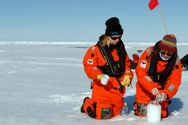 The Human Impact on Our Natural Environment, Rubber and Varnish Now Found in Arctic Snow